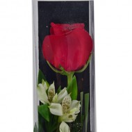 Single Red Rose One Rose Box arrangement